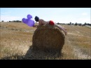 Blow to pop purple mouse balloon
