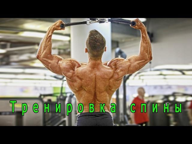 Упражнения на спину. 1 часть