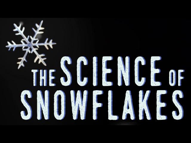 The science of snowflakes - Maruša Bradač