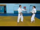 Features of the Kihon Waza Shidokan Tomiki Aikido