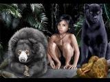 Книга джунглей - реальность или фантастика? Документальный фильм (18.05.2016)