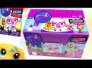 Blind Bag HAUL Littlest Pet Shop Paint Splashin BOX case Part 1 LPS toy review opening