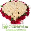 Доставка цветов Cvetoland.ru