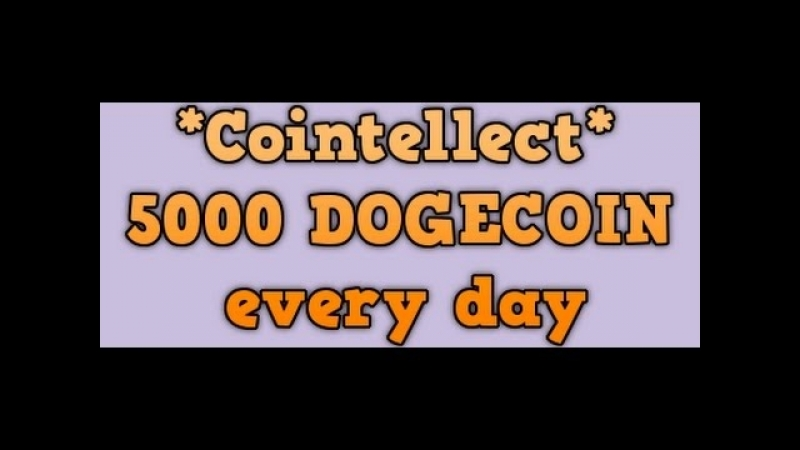 Cointellect | Вывод денег через биржу EXMO