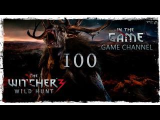 Ведьмак 3: Дикая Охота Прохождение #100 [Имлерих и Ведьмы]