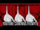 Видео для детей. Танец маленьких лебедей. Песенки для детей