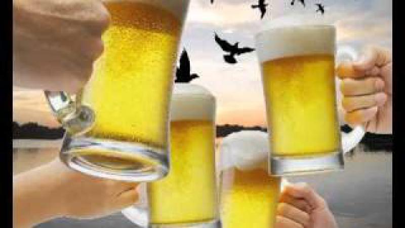 Пей пиво (Дискотека