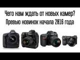 Чего нам ждать от новых камер? Превью Nikon D5, D500, Canon 1Dx II, Sony a6300.