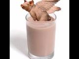 Ебанутая летающая свинья нахуй  пердит в твой ебанный какао