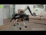 Boston Dynamics представила нового робота SpotMini
