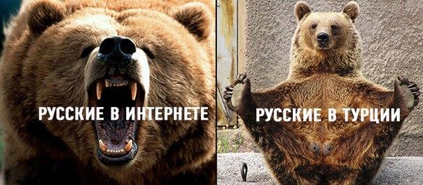Инцидент с Су-24 противоречит международному праву. Нет ни извинений, ни предложений о возмещении ущерба, - Путин - Цензор.НЕТ 6916