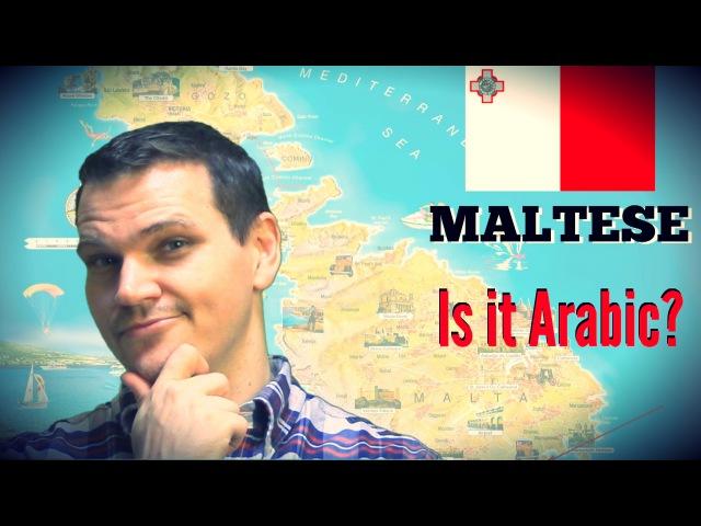 The Maltese Language An Arabic Descendant