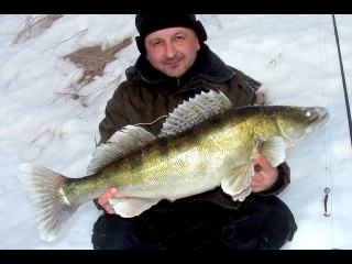 Как правильно искать рыбу. Зимний спиннинг на Москве-реке. Обучающее видео о рыбалке. Джиг.