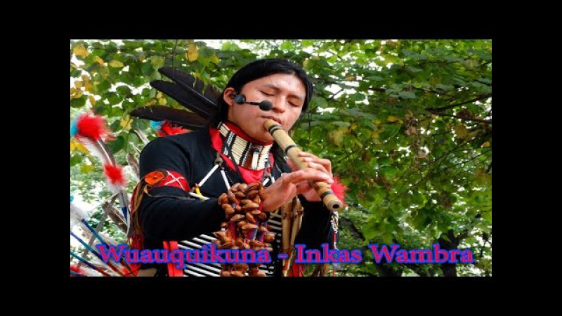 Wuauquikuna - Inkas Wambra