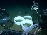 Эксперименты с диоксидом углерода на морском дне (ориг.
