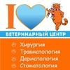 Сеть ветеринарных клиник *Рыжий кот* Полтава