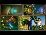 Альцион Плеяды 30-3 Двойная политическая игра. Фотонный свет среди роз, космическ...
