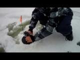 Зимняя рыбалка на Рыбинском Водохранилище