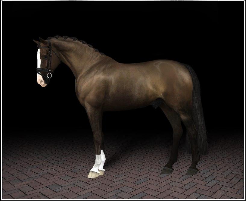 Регистрация лошадей в RHF 2 - Страница 38 7ivqitu1QDw