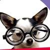 ZooSmart.com.ua - интернет-магазин зоотоваров