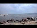 Железный Порт. Дикий пляж. Дельфинчики