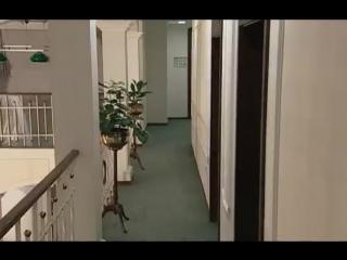 Авантюристка 5 серия