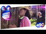 Лучшие Видео дня! #50 Лесная братва