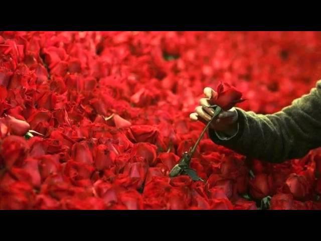PPK - Million Of Roses (PPK MIX)