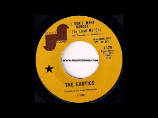The Exotics - I Dont Want Nobody (To Lead Me On) [Janus] 1970 Soul 45