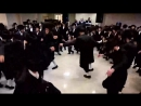 Moshe Shekell - Money Profit Swing