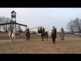 Подготовка лошадей в Казачьем Дозоре
