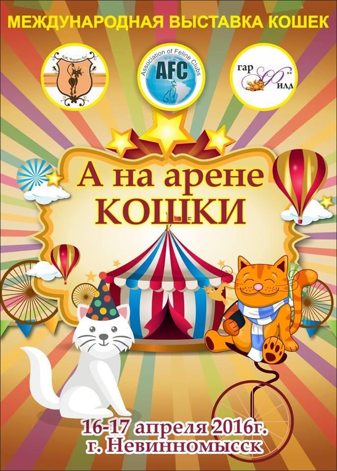 Международная Выставка Кошек AFC г.Невинномысск 16-17 апреля 2016г. Bt2VUAGYHIY