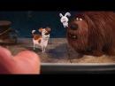 Тайная жизнь домашних животных ТВ ролик 7 Лифт нужен HD