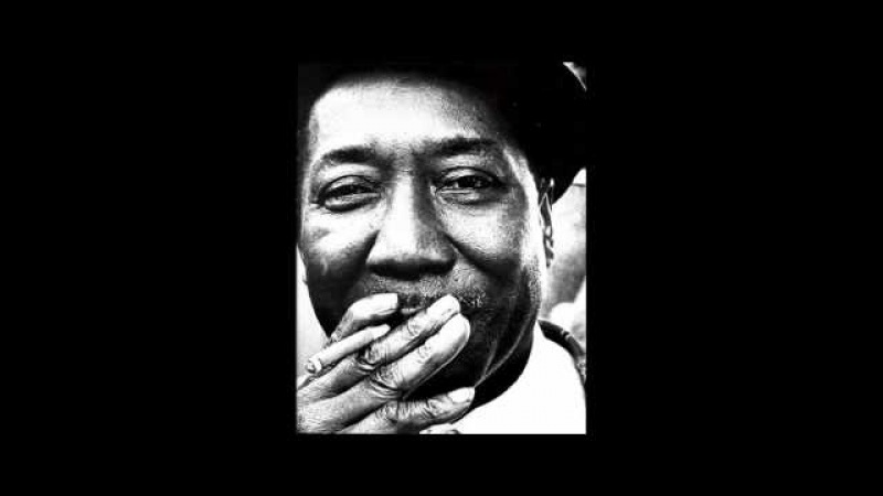 Muddy Waters - Mannish Boy (I'm A Man)