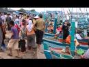 Kampot fish market - Оптовый утренний рыбный рынок в Кампоте (Камбоджа)