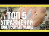 Топ 5 упражнений для грудных мышц [Якорь | Мужской канал]