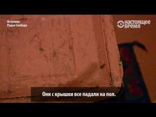 Жители общежития МГУ: клопы, тараканы и студенты