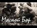 Мясной Бор (Призраки в Новгородской обл.)