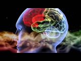 Energie Theologie,Metachemie 7 Der Quanten Aktivist - Dr. Amit Goswami