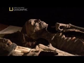 Пропавшая династия (2007)