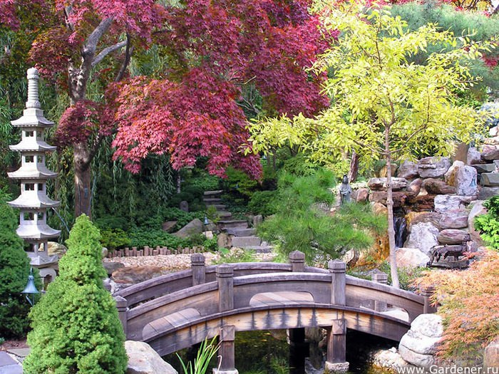 В Японском саду прочтут лекции о культуре Страны восходящего солнца