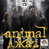 ANIMAL ДЖАZ | 02.04 | РОСТОВ-НА-ДОНУ | БУХАРЕСТ