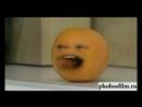бешеный апельсин
