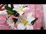How to make Lily Paper Flowers Tutorial - Cách làm hoa ly từ giấy nhún đơn giản