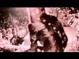 Супер-пупер Элис Купер  Super Duper Alice Cooper (2014)