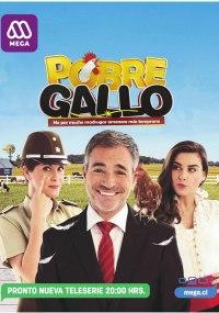 Pobre Gallo 1x141
