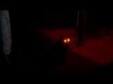 кот Мишка - светофор !
