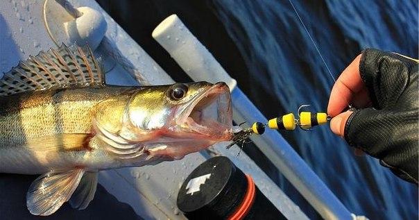 ловля рыбы на мандалу