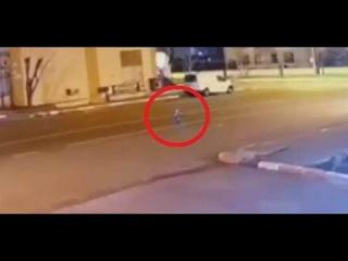 Уличная камера наблюдения в Турции засняла загадочное существо