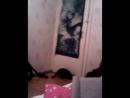 Моя кошка Нюша3
